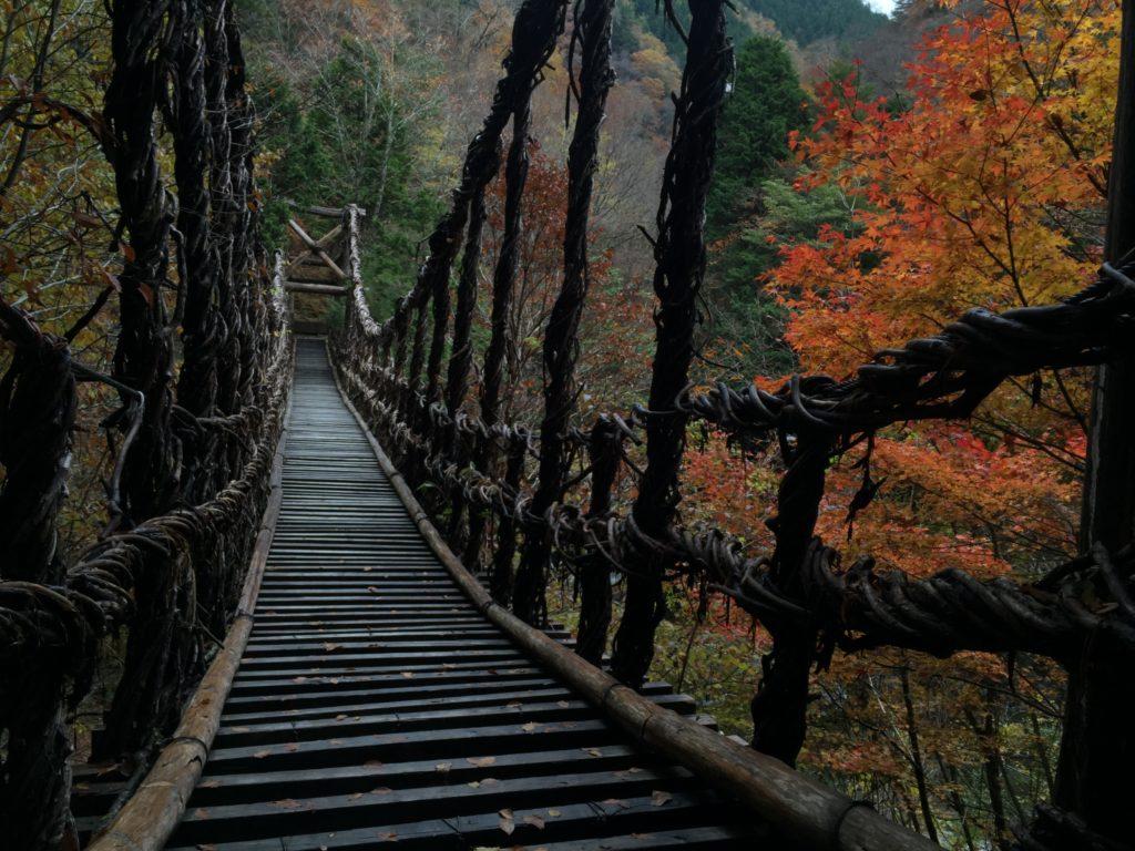吊り橋で「風が気持ちいいね」って話かけてくれたおじさんが飛び降り○○した
