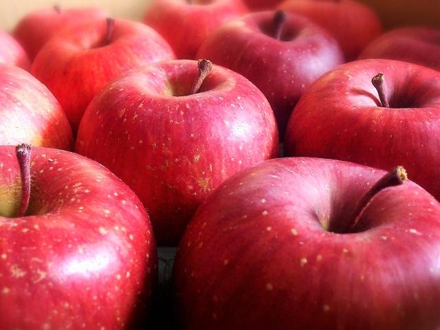 姪が俺に「リンゴバーンして!」って言ってリンゴ持ってきたのでパーンしたら絶望した顔で泣き始めた