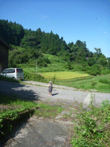 東京に転勤になったとき、田舎出身田舎育ちの嫁を連れて行ったら、馬鹿にされた