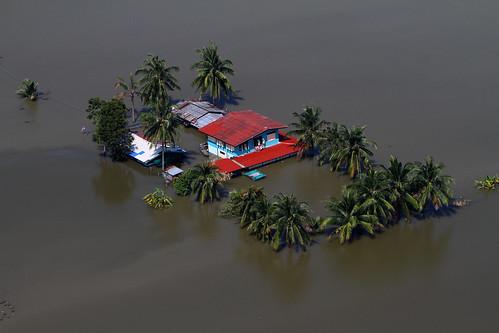 洪水でやっと泳いできた人を蹴り落とした